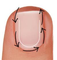 contorno-cuticulas