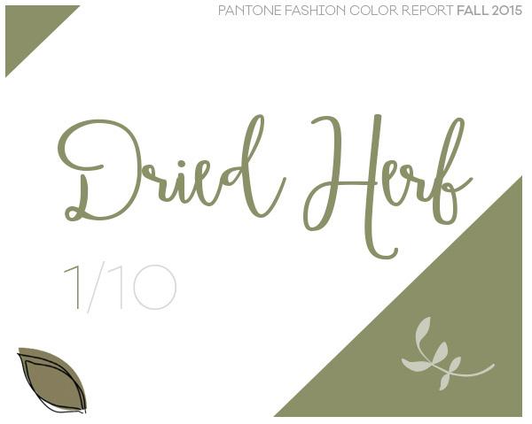dried-herb-pantone-abertura-1