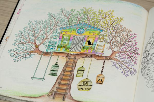 peq_jardim secreto pinturas ideias inspirações13