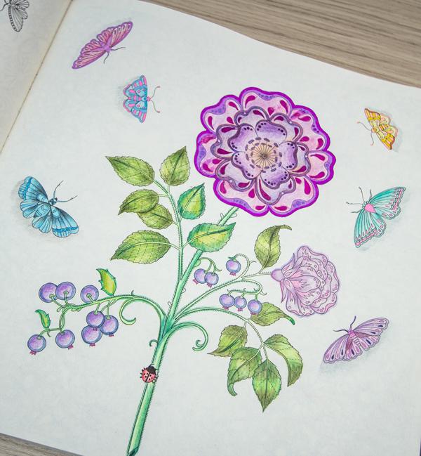 jardim secreto pinturas ideias inspirações14