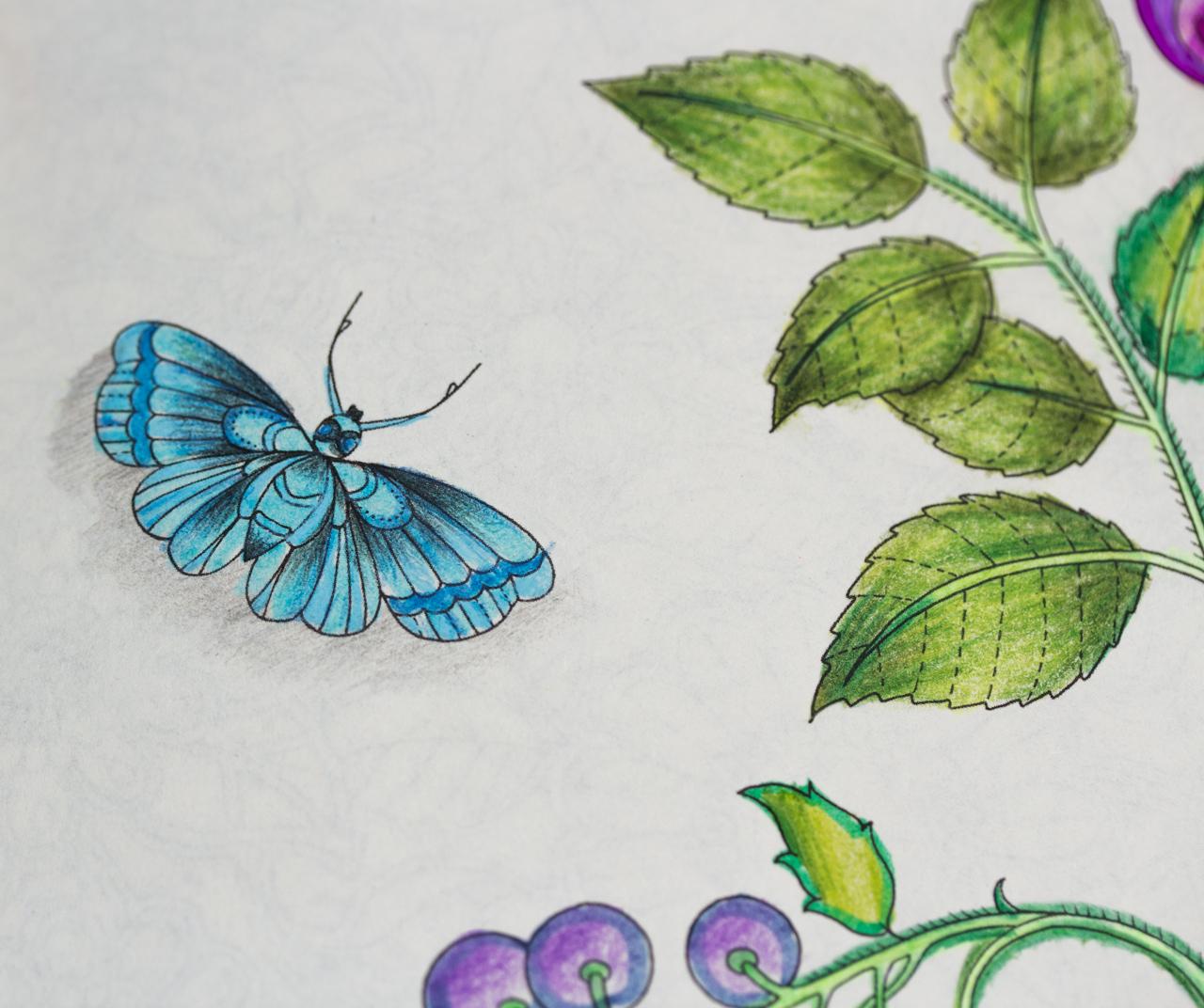flores jardim secreto:livro Jardim Secreto nas unhas (e o que eu pintei até agora)
